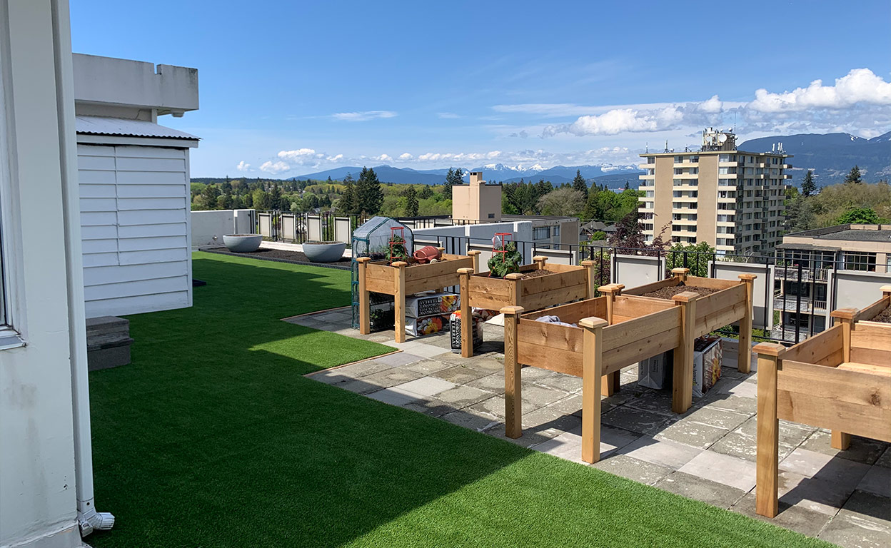 ace turf artificial grass Coquitlam BC